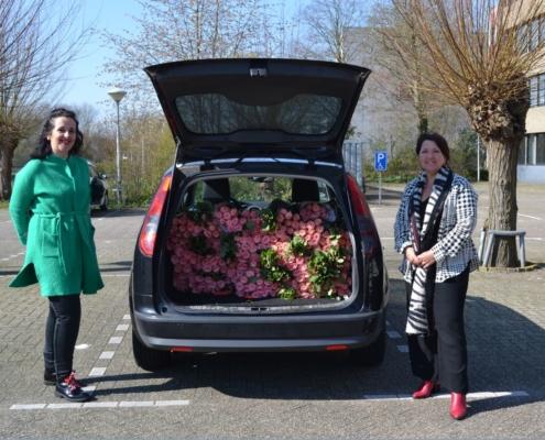 foto flower boost challenge